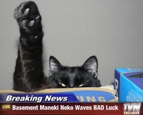 Breaking News - Basement Maneki Neko Waves BAD Luck
