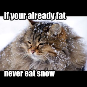 its snow decision
