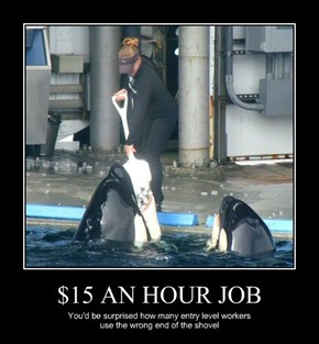 $15 AN HOUR JOB