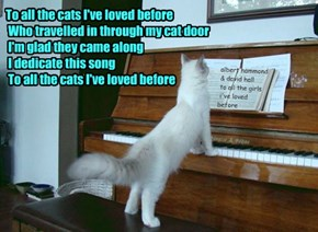 To all the cats I've loved before  Who travelled in through my cat door  I'm glad they came along  I dedicate this song  To all the cats I've loved before