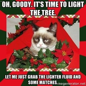 OH, GOODY. IT'S TIME TO LIGHT THE TREE.