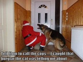 Tell Mom to call the cops.....I caught that burglar the cat was telling me about