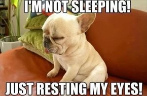 I'm Awake so Don't Wake me Up!