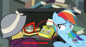 Ponies type in Binary