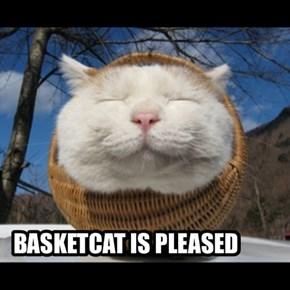 BASKETCAT IS PLEASED