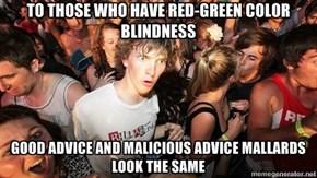 Do the Color Blind Trust Advice Mallards?