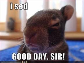 i sed        GOOD DAY, SIR!