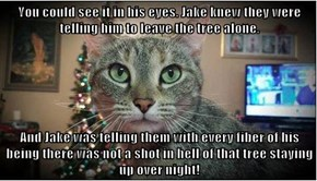 You could see it in his eyes. Jake knew they were telling him to leave the tree alone.  And Jake was telling them with every fiber of his being there was not a shot in hell of that tree staying up over night!