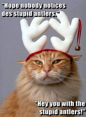 """Hope nobody notices                                           des stupid antlers.""  ""Hey you with the                                                  stupid antlers!"""