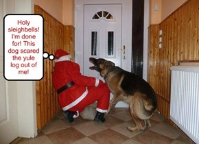 DOgs are colorblind. He thought Santa was a thief