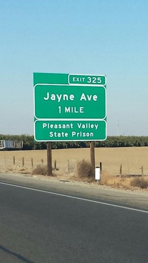 We Should Go To The Crappy Avenue Named After Me!