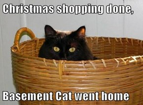 Christmas shopping done,  Basement Cat went home
