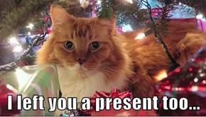 I left you a present too...