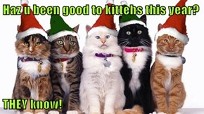 Haz u been good to kittehs this year?  THEY know!