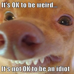 It's OK to be weird...  It's not OK to be an idiot