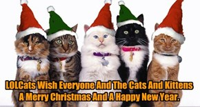LOLCats Wish Everyone And The Cats And Kittens A Merry Christmas And A Happy New Year.