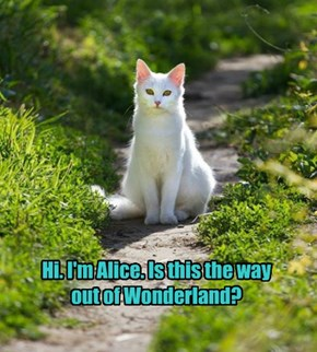 Hi. I'm Alice. Is this the way out of Wonderland?