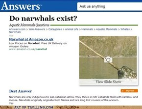 Narwhals Can Fly, Too