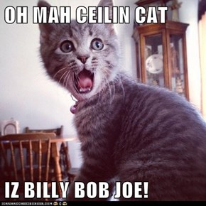 OH MAH CEILIN CAT  IZ BILLY BOB JOE!