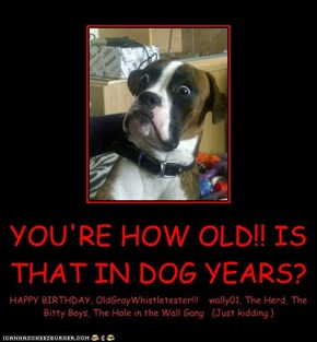 YOU'RE HOW OLD!! IS THAT IN DOG YEARS?