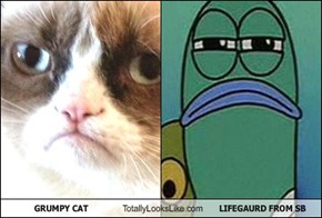 GRUMPY CAT Totally Looks Like LIFEGAURD FROM SB