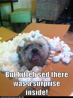 But kitteh sed there was a surprise inside!