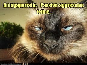Antagapurrstic.   Passive-aggressive feline.