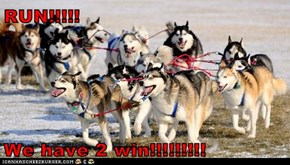 RUN!!!!!  We have 2 win!!!!!!!!!