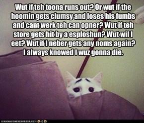 Worried Cat worries.