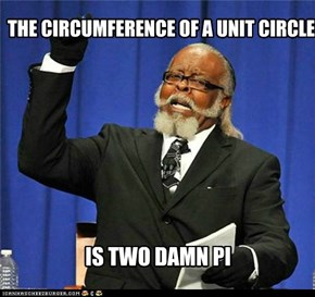 THE CIRCUMFERENCE OF A UNIT CIRCLE