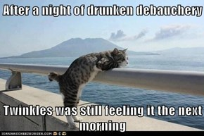 After a night of drunken debauchery  Twinkles was still feeling it the next morning