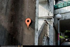 Google-Maps Birdhouse