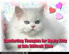 Comforting Thoughts for Nawty Kitty at this Difficult Time