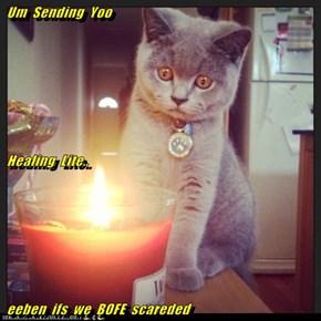 Um  Sending  Yoo  Healing  Lite..  eeben  ifs  we  BOFE  scareded