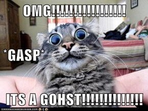 OMG!!!!!!!!!!!!!!!!! *GASP* ITS A GOHST!!!!!!!!!!!!!!