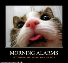 MORNING ALARMS