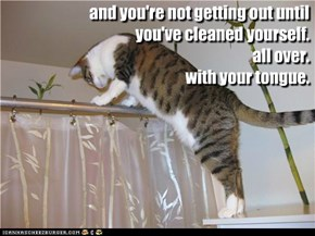 and you're not getting out until you've cleaned yourself. all over. with your tongue.