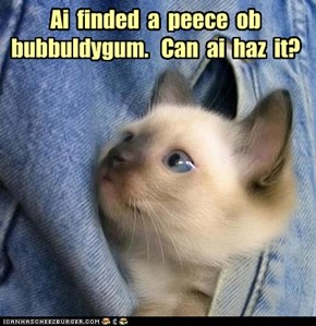 Ai  finded  a  peece  ob bubbuldygum.   Can  ai  haz  it?