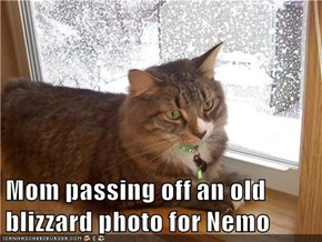 Mom passing off an old blizzard photo for Nemo