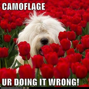 CAMOFLAGE  UR DOING IT WRONG!