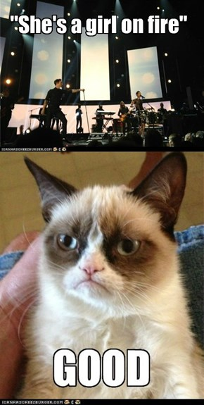 Grumpy Cat Is Not Amused By Your Antics, Alicia Keys