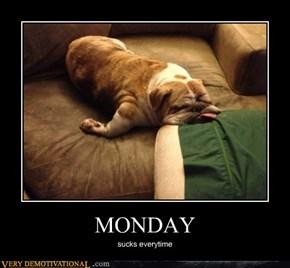 Damn Mondays