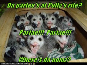Da partee's at Polly's rite?  Partae!!!  Partae!!! Where's da nomz?