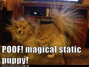 POOF! magical static puppy!