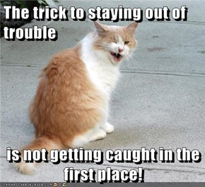 The trick to staying out of trouble  is not getting caught in the first place!