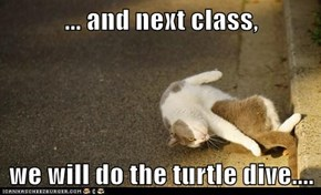 ... and next class,  we will do the turtle dive....
