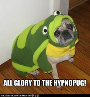 ALL GLORY TO THE HYPNOPUG!