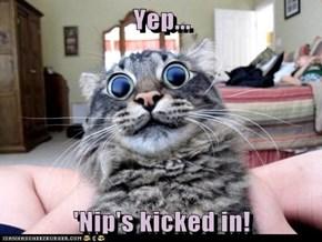 Yep...  'Nip's kicked in!