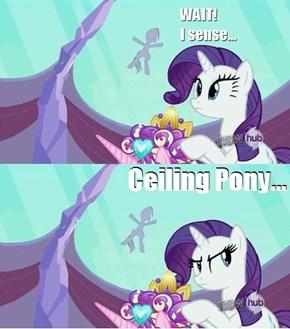 Ceiling Pony