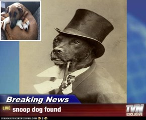 Breaking News - snoop dog found